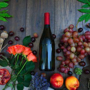 wine tour in Croatia